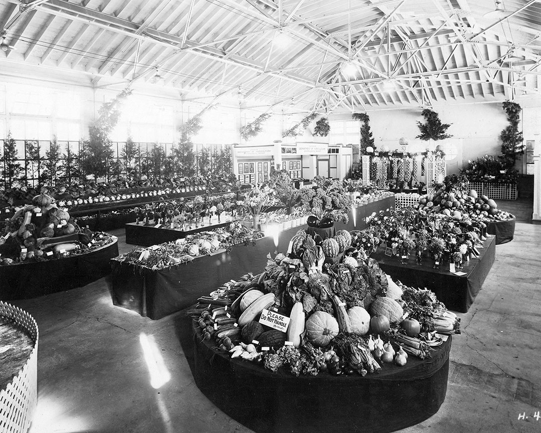 Vegetable Exhibit, 1928