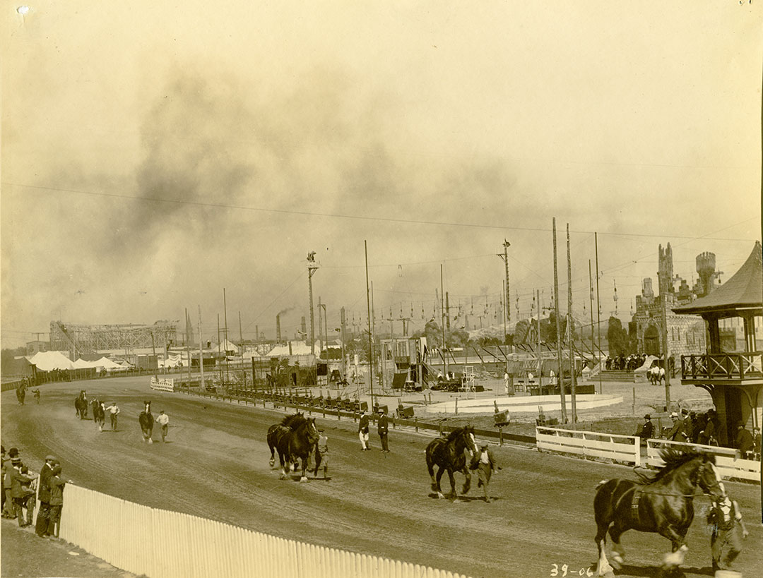 Prize Winning Horses At The Grandstand  In 1906