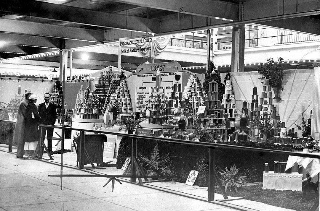 Honey Display At The CNE, 1920